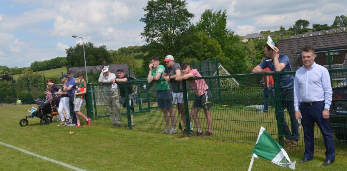 Daniel whelan engineering, fencing solutions, gaa pitch fencing